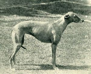 1902_img5