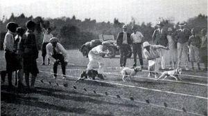 Pasadena 1920